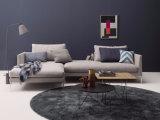 La petite deux portée L sofa de forme a placé avec le Tableau latéral pour la maison (FS-004)