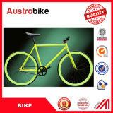 Nuevos productos para 2016 la bicicleta fija barata de la bici del marco 700c MTB de la bicicleta de la bici del engranaje de Fixie de la sola velocidad para la venta de China