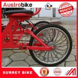 Bike 4 колес Bike Surrey колеса сплава 20 дюймов