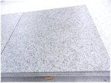 Производитель Цена CS белый гранит для плитки / плиты