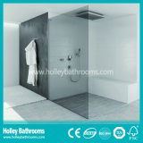 Salatable Walking in Shower Door with Tempered Frosted Glass (SB203N)