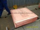 Fábrica de China do formulário do cobre do cátodo da alta qualidade