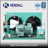 Unidad de condensación refrescada aire para la refrigeración/la cámara fría/la conservación en cámara frigorífica