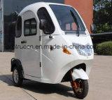 De volledige Elektrische MiniDriewieler van de Cabine met Automatisch