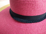 큰 테두리 서류상 끈목 밀짚 모자