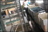 Contenitore di cuoio stabilito di coltelleria di 84 PCS (CT531)