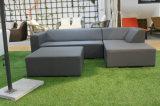 Jogo Selectional do sofá do couro moderno do pátio