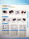Roland Epson/Infiniti/Galaxy /Floar/ 기지 Color/Lecai Ect.를 위한 고유 하나 정지 큰 체재 그리고 용매 인쇄 기계 예비 품목