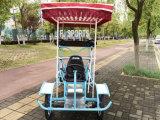 Велосипед дешевого цены сценарный для сбывания в Гуанчжоу