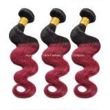 """"""" tessuto allentato di Ombre dei capelli del Virgin dell'onda 22 3 gruppi dei capelli 1b/Red"""