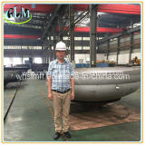 2: Casquillos principales semi elipsoidales de 1 tubo del acero inoxidable 316/316L