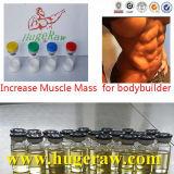 Las estructuras inclinan la testosterona cruda anabólica Enanthate del polvo de la hormona esteroide del músculo