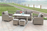 Giardino Rattan Wicker Sofa con New Design