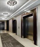 الصين صناعة [ستينلسّ ستيل] مسافر مصعد