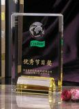 2016 del estilo de China cristalino caliente venta personalizada Achievement Award Trophy