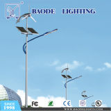 8m Pool 50W LED Solar Street Lights