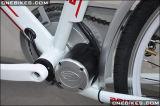 External Controller를 가진 36V 250W/350W MID Crank Motor Kit
