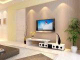 Soporte moderno del gabinete de los muebles TV del altavoz extensible (BR-TV923SPK)