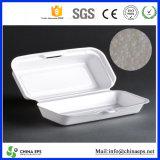 Produce professionale l'ENV Polyfoam per Making Styrofoam Food Box, Sample è Available per Free