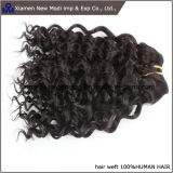 "Pelo humano Weft rizado del pelo humano de China con 16 "" longitudes"