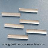 Forte magnete permanente L30 del neodimio