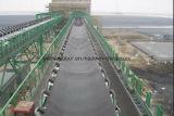 SaleのためのTop QualityのEP Conveyor Belt