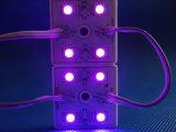 5054 광고를 위한 4chips SMD LED 모듈