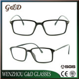 Het nieuwe Populaire Optische Frame van het Oogglas Ultem Plastic Eyewear met Slank Roestvrij staal 7019