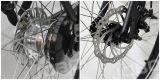 都市電気バイク700c 2016の新しいモデル(JB-TDB26L)