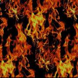 Pellicola di immersione dei draghi di Yingcai idro dell'acqua di stampa Burning di trasferimento