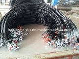 Ensemble de tuyau en caoutchouc hydraulique avec raccords femelles mâles