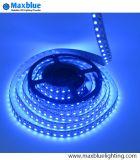 Kleur die het 5050 RGB LEIDENE Lichte LEIDENE van de Strook Licht van de Strook voor Bevordering ruilen