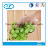 Fuente guantes azules/claros de Disposale de la planta de China del LDPE