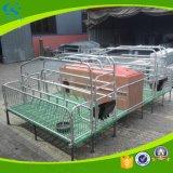 Erhaltungs-Bereich-Rahmen-Sau-werfendes Bett