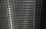 電流を通された溶接された金網の電流を通された正方形の金網