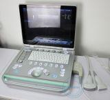 Veterinärfarbe Doppler (DopScan L15V)