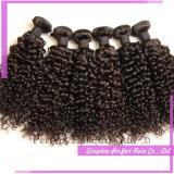 ねじれた巻き毛の100%年のバージンのブラジルのインドのRemyの人間の毛髪