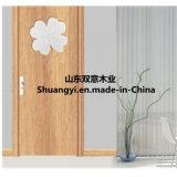 Fraîche et belle porte classique en bois.