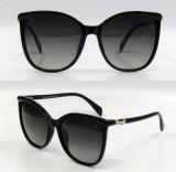 مصمّم جديد تماما بلاستيكيّة نمط نظّارات شمس لأنّ نساء/سيادة ([دب1174ز])