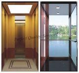 Elevatore domestico residenziale di vetro con la buona decorazione