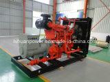 Cummins Engine 허가를 가진 천연 가스 또는 Biogas 발전기