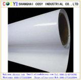 Eco-vinilo solvente rollos de PVC Vinilo autoadhesivo para prinitng Publicidad