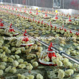 Полное Set Automatic Poultry Equipments для Broilers