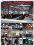 Groupe électrogène diesel de marque de la Chine avec insonorisé