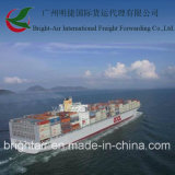 Sea barato Freight Shipping From China a Grecia