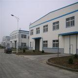 Faisceau en acier d'entrepôt structural pour l'Afrique (ZY201)