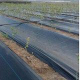 Tela de controle de erva daninha tecida PP