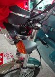 バイクのEオートバイを耕作するCE/CCC大きいChargoの三輪車