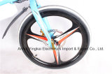 "20 "" Folding elétrico Bike 350W 48V Folded Electric Bicycle (YK-EB-012)"