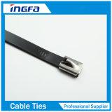 serres-câble d'acier inoxydable de bâton de PVC d'épaisseur de 1.2mm avec l'enduit noir